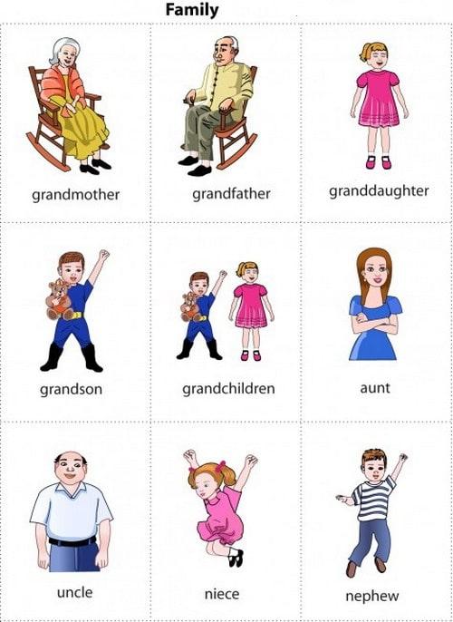 resimli ingilizce aile fertleri
