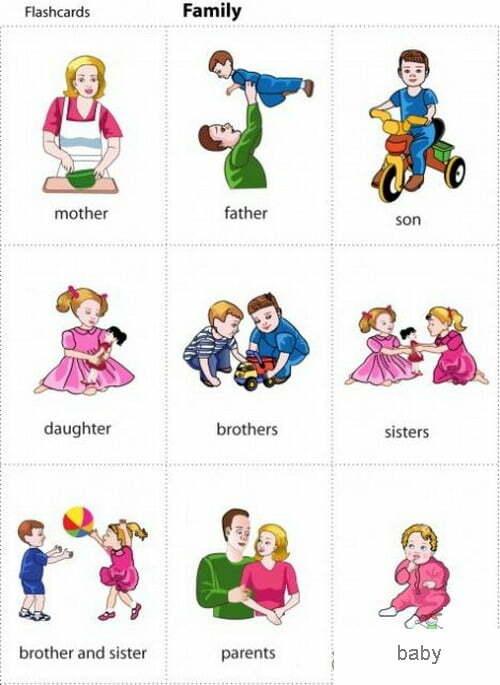 resimli ingilizce aile üyeleri